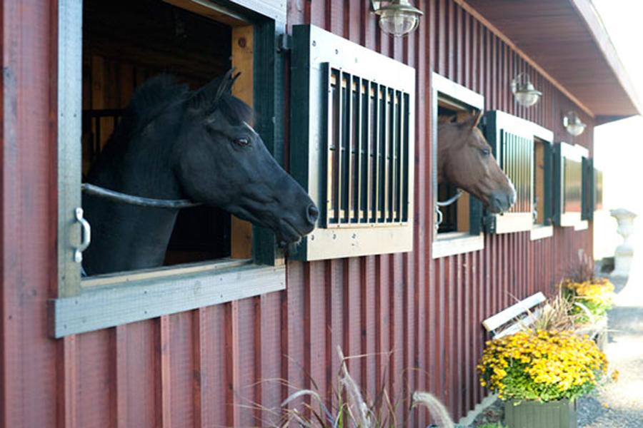 Horse Barn Roseview Dressage Millbrook Ny Sloan Architects